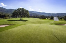 golf-club-various-6